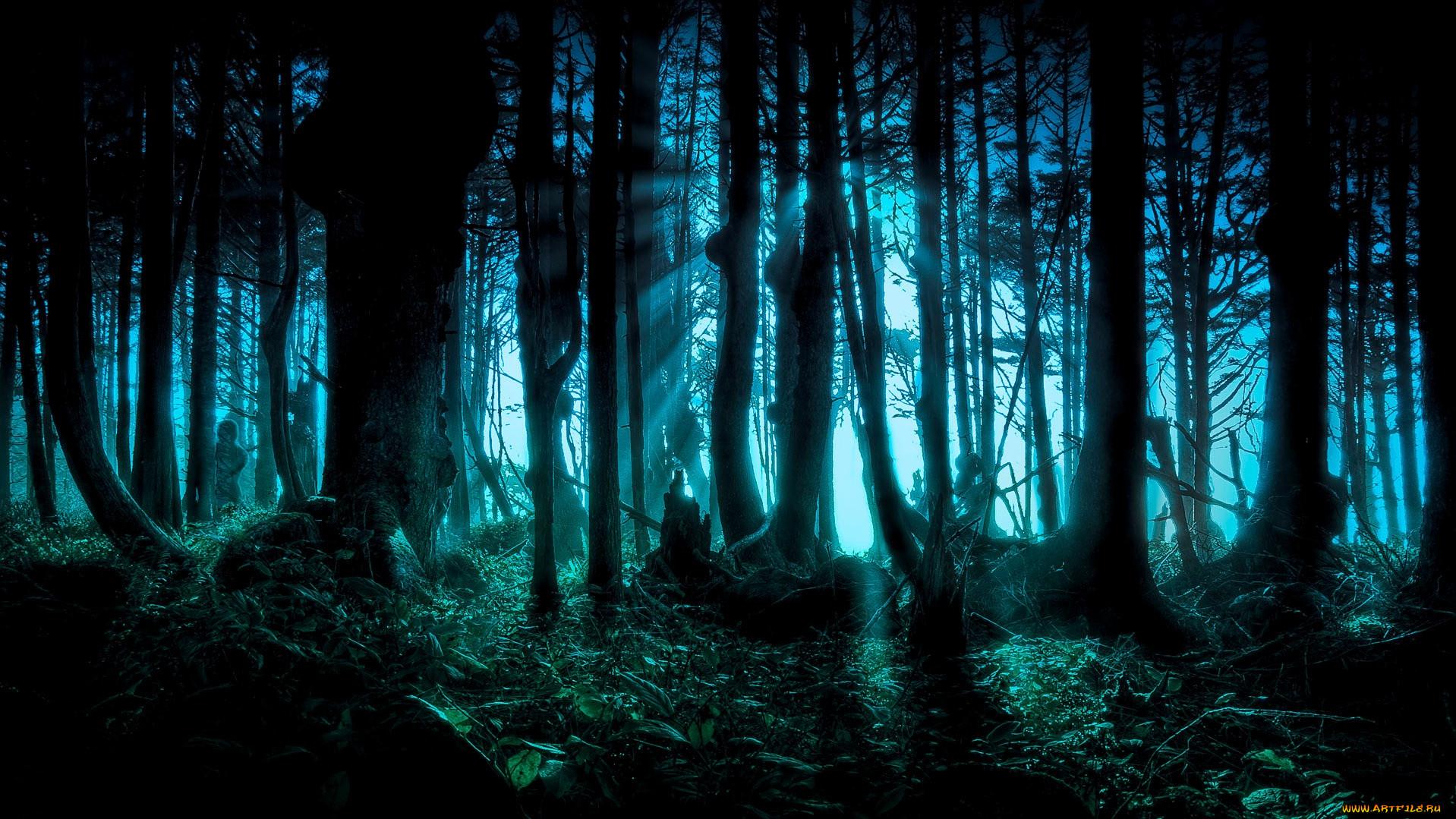an analysis of thoreaus theory that human life mimicks nature